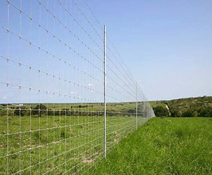 Steel Field Fence with Fixed Knots Structure